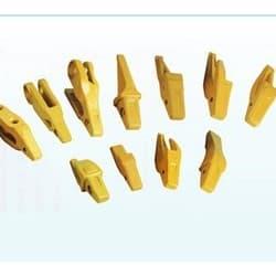Zähne, Zahnsysteme